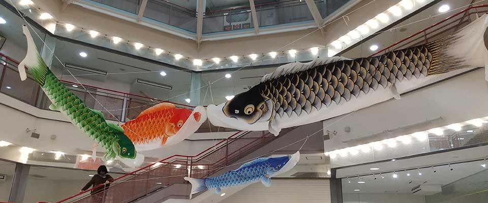 四色の鯉のぼり